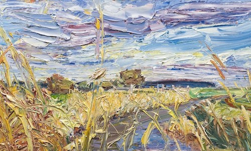 Late March, 2008 - Pett level, yellow rushes, no tops because of hail storm in 2007 - 60/31cm