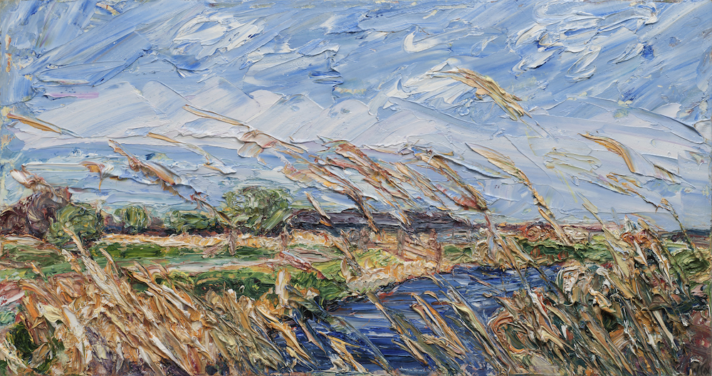 25 April 2013- Pett Level - Reeds