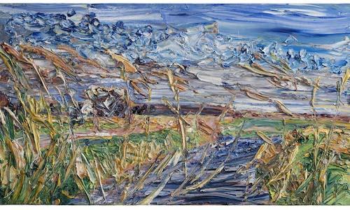 16 April, 2010 - Pett level, Reeds